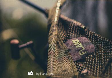 """Ohne Kompromisse: """"The Net"""" von Flanx"""